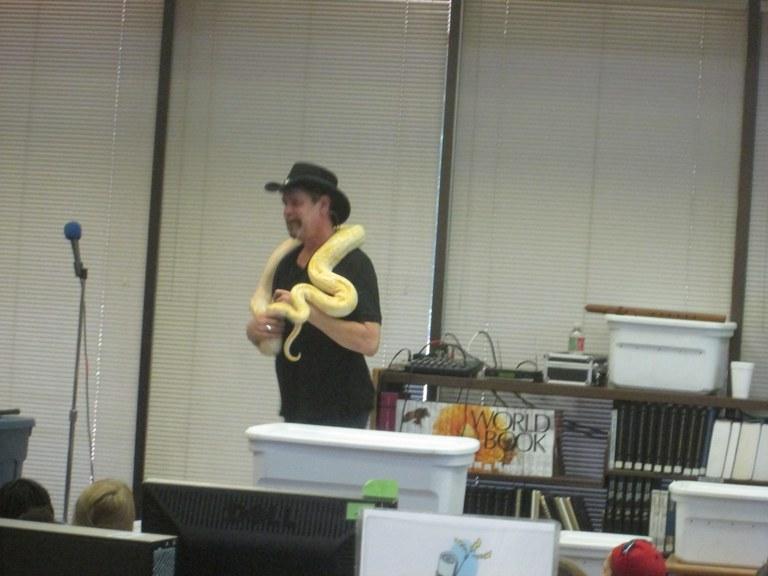 Snake Encounters